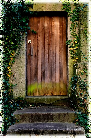 Moss covered old Door by Angelika  Vogel