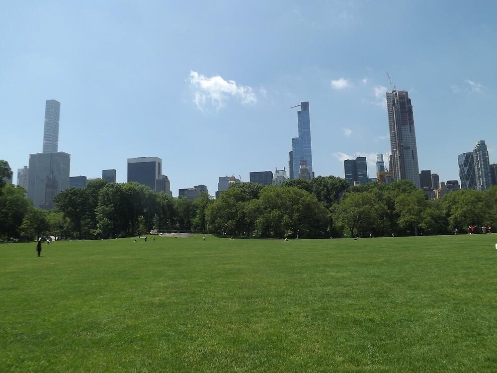 Lawn, Skyline, Park, Skyscrapers, New York City by lenspiro