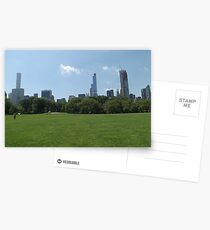 Lawn, Skyline, Park, Skyscrapers, New York City Postcards
