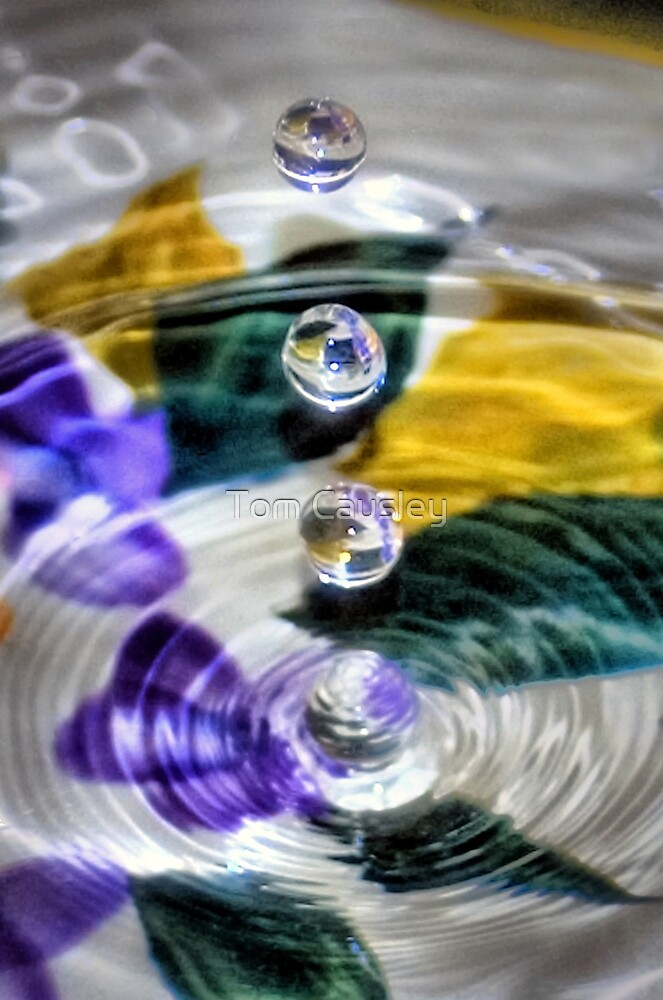 Water Droplets by Tom Causley