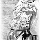 Barn owl by moonstone