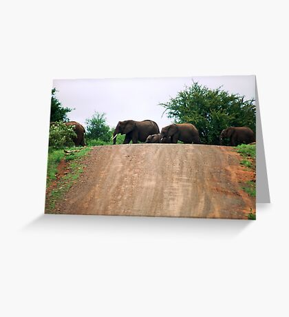 """""""THE ELEPHANT CROSSING"""" Greeting Card"""