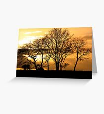 January Sun Greeting Card