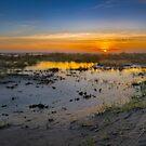 Grayland Beach Sunset by Zigzagmtart