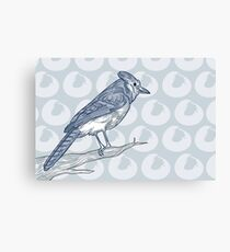 The Bluest of Jays Canvas Print