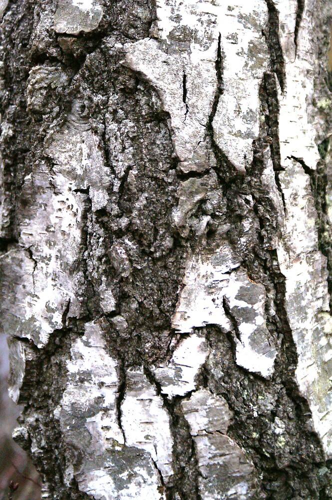 Bark by kimberleyB