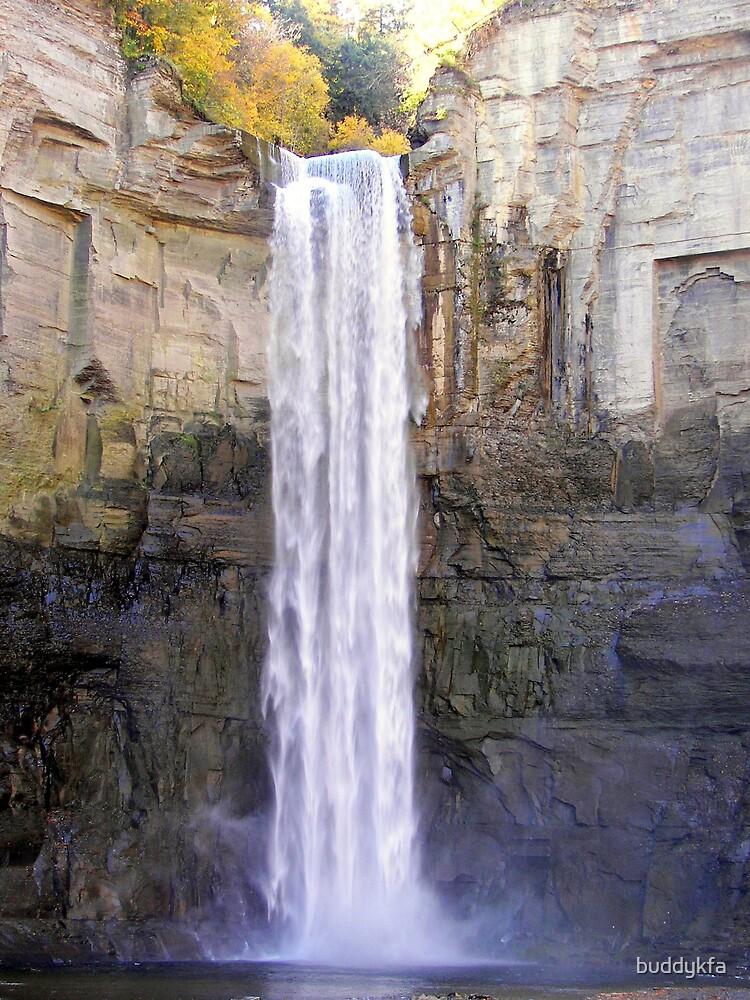 Taughannock Falls by buddykfa