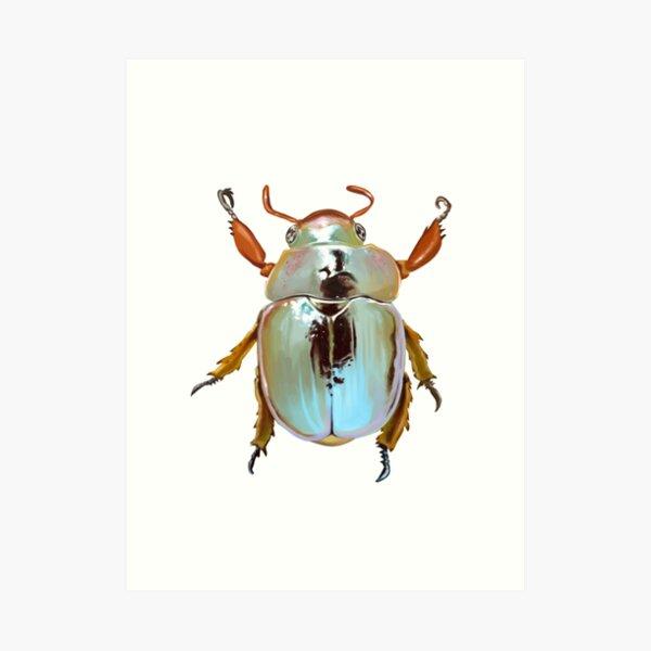 Rainbow Jewel Scarab Beetle Art Print