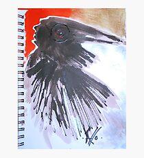 crow 1 Photographic Print