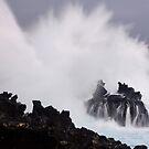 Exhilarating!! by Randy Richards
