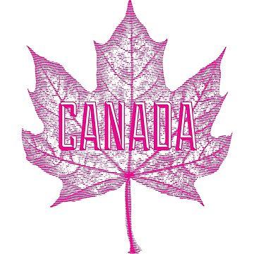 Hoja de arce de azúcar de Canadá en rosa de Garaga
