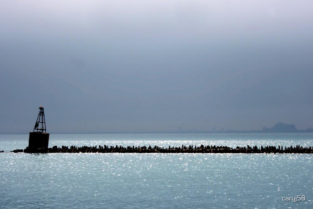 Lake Michigan by caryj58