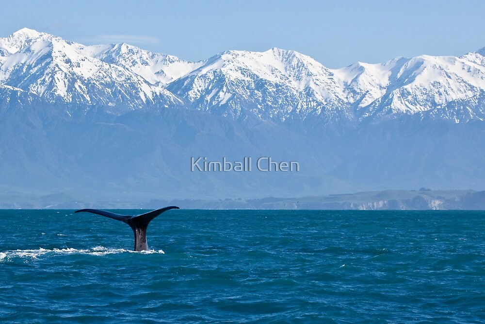 Wild and Free by Kimball Chen