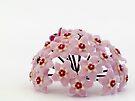 Pink Hoya by DPalmer
