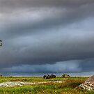 0452 Storm over Dog Rocks - Geelong by Hans Kawitzki