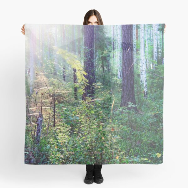 Sunny morning in the forest Scarf