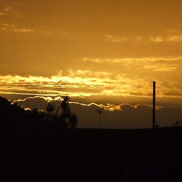 Bundaberg Sunset by artforsoul