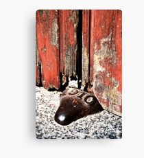 Doorstop Canvas Print