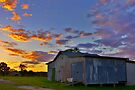 Vibrant old barn by Penny Kittel