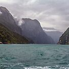 Milford Sound, New Zealand #5 by Elaine Teague