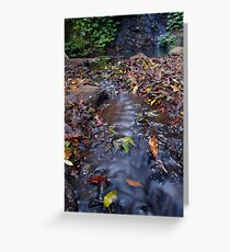 Leaf Stream Greeting Card