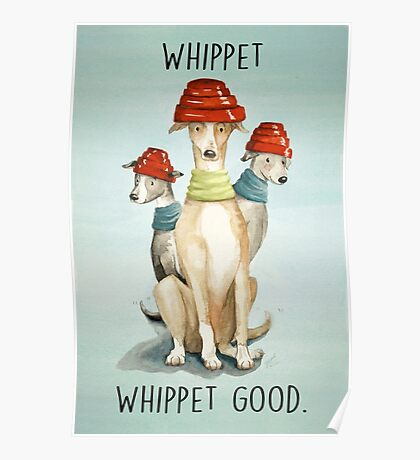 Devo Dogs Poster