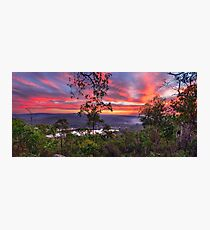 Forest Sunset Photographic Print