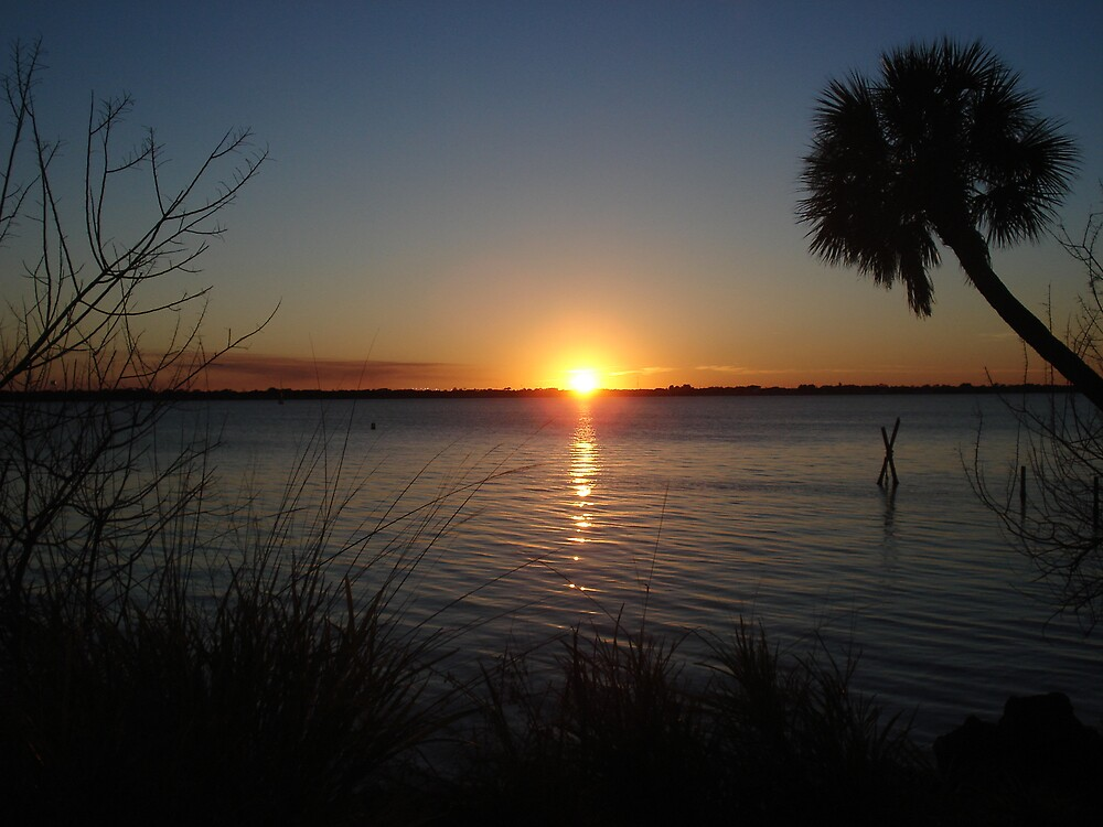 SUNSET IN Florida 1 by Barbara Boot