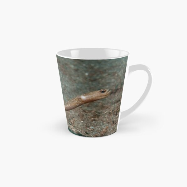 Many-toothed Garden Eel, Indonesia Tall Mug