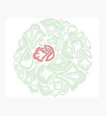 Archibald - the green meadow elf Photographic Print