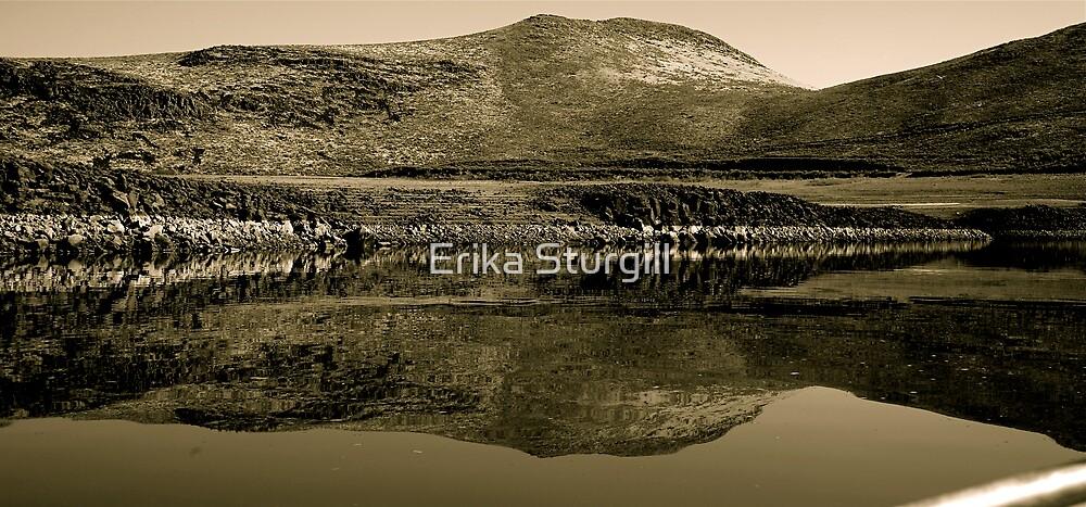 Mirror Of Magic Reservoir by Erika Sturgill