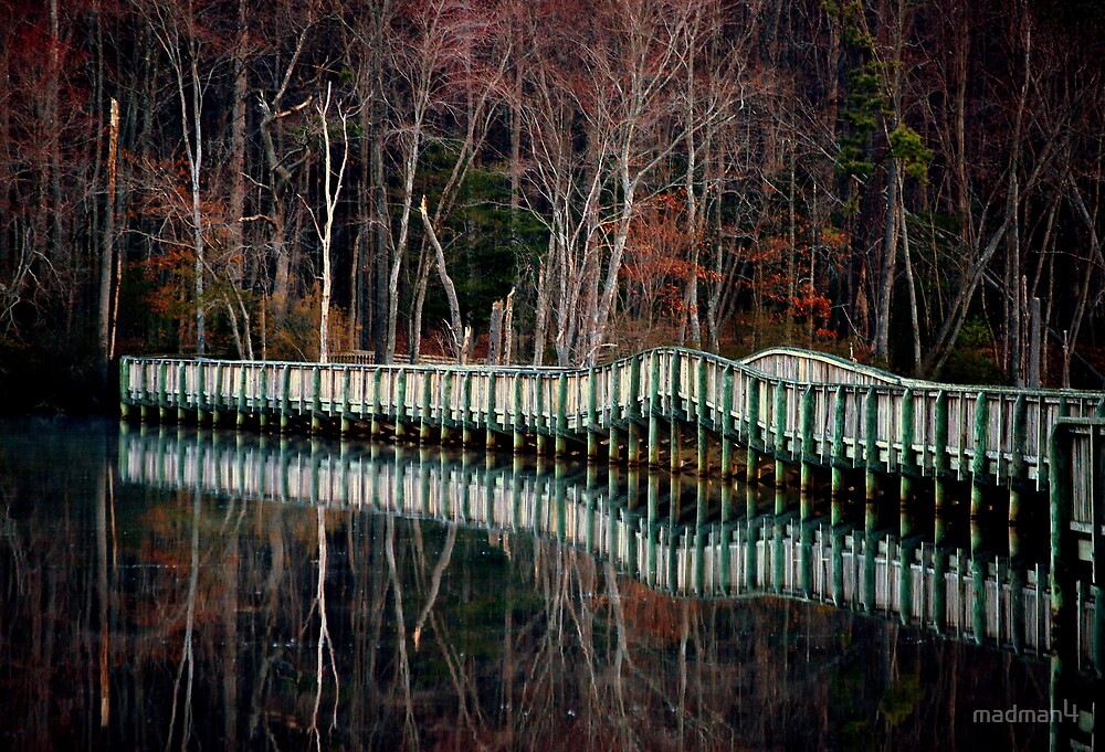 Bridge Reflections by madman4