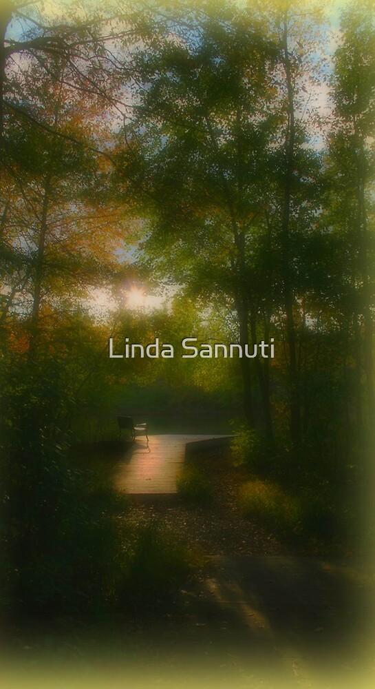 Dreamscape by Linda Sannuti