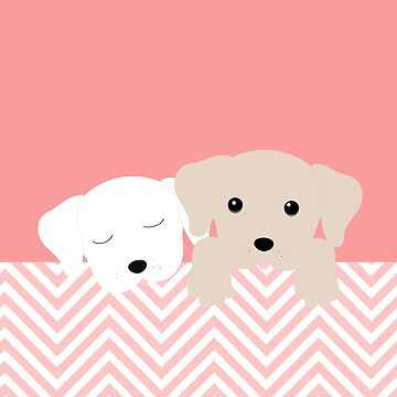 DOGS by narais