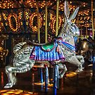 Run Rabbit Run by Debra Fedchin