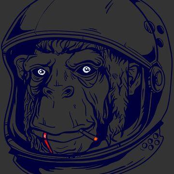 Crazy Monkey by Anndha