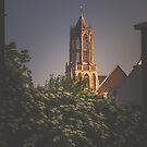 Evening light on the belfry (Utrecht) by photogenicgreen