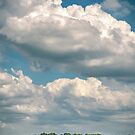 Willows and clouds (Schalkwijk, Utrecht) by photogenicgreen