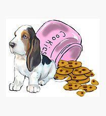 Baet hound spilled the cookies Photographic Print