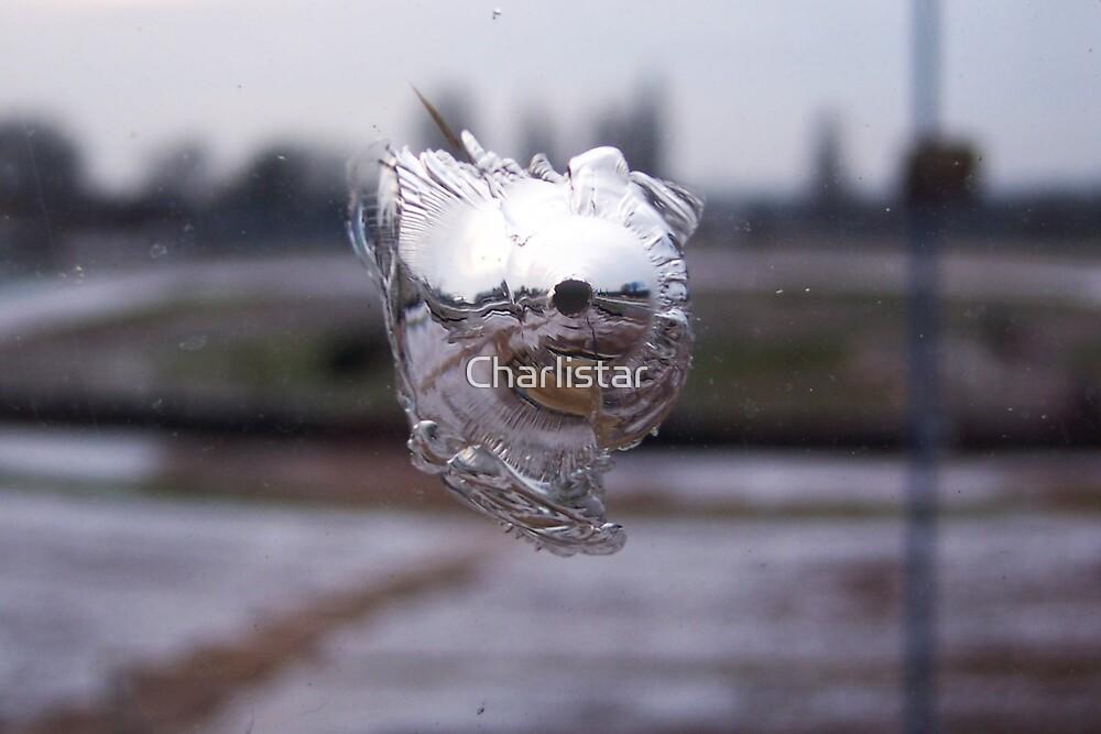 bullet holes by Charlistar