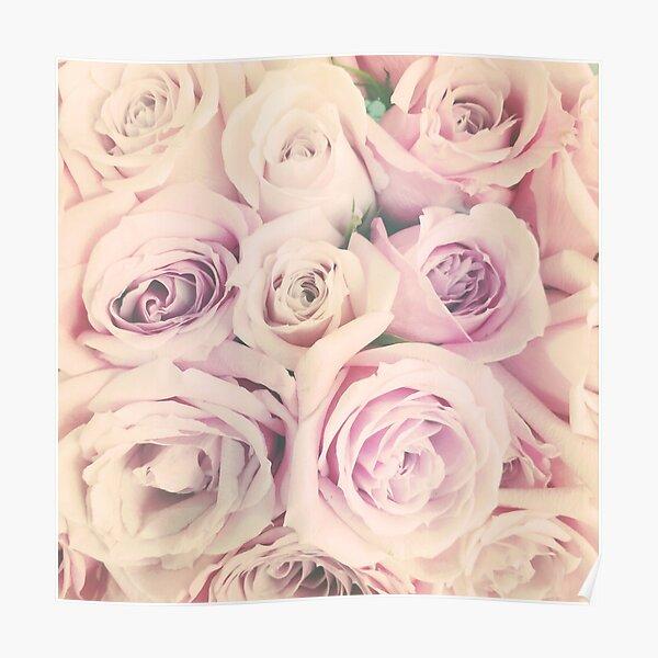 Gift for Gardener - Pink Rose Blush Pastel Gift - Floral Present Poster