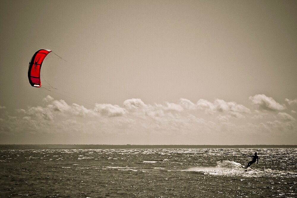 Blown by the wind by Csaba Jekkel