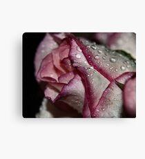 rasberry ripples Canvas Print