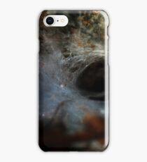 Lair iPhone Case/Skin
