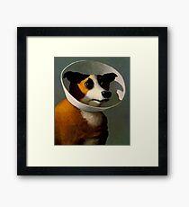 Orejeras de perro  Framed Print