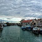 Pittenweem Harbour by Tom Gomez