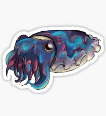 Sloane the Cuttlefish Sticker