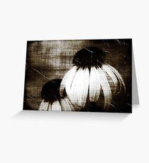 Echinacea Dark Dreams Greeting Card