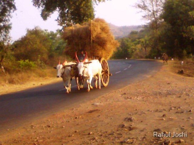 fuel cutting by Rahul Joshi