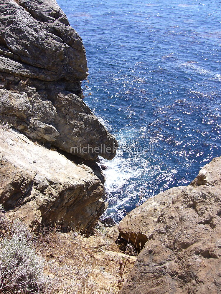 Over the edge...  Big Sur by michellemaxwell